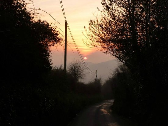 Dorset Country Holidays Glamping: On the walk back from Shaftesbury (up the road)