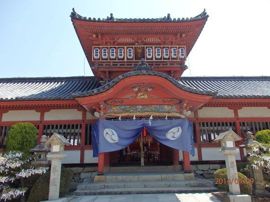 Isaniwa Shrine: 八幡造りの本殿