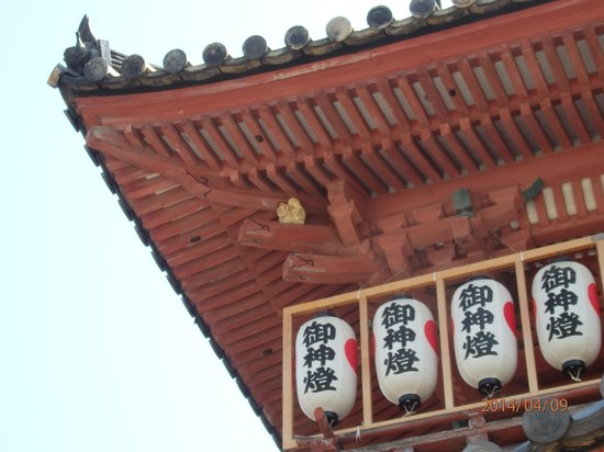 Isaniwa Shrine: 屋根の下に居るのは