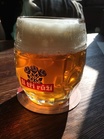 Beer Prague - walking brewery tours: One of the best beers in the world