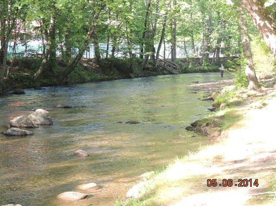 Riverbend Motel & Cabins: Chattahoochee River