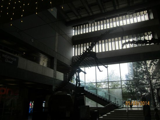 Museum of Science and Industry: atrium