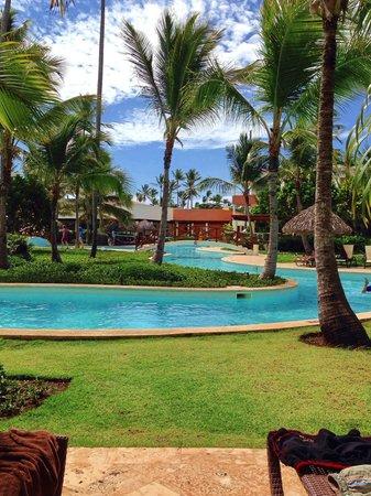 Secrets Royal Beach Punta Cana: Pool 8.5.2014
