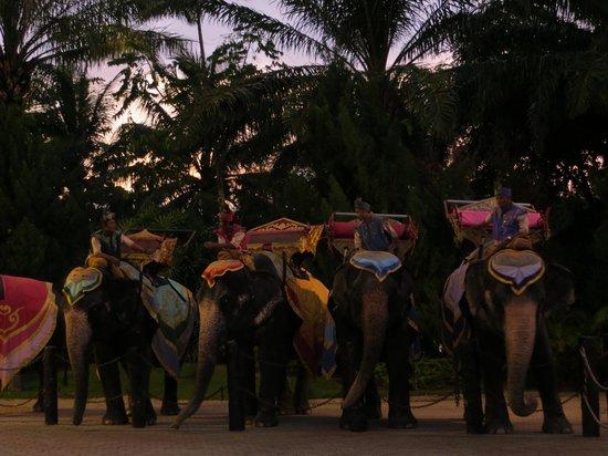 Phuket FantaSea : Elephants