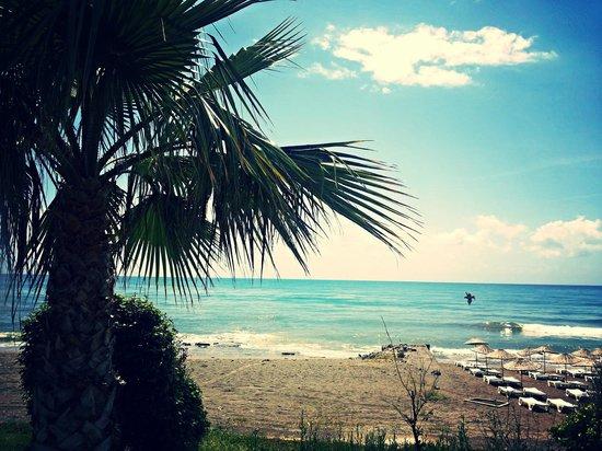 Monte Carlo : beach area