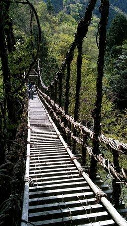 Okuiya Niju Kazurabashi Bridge : 男橋
