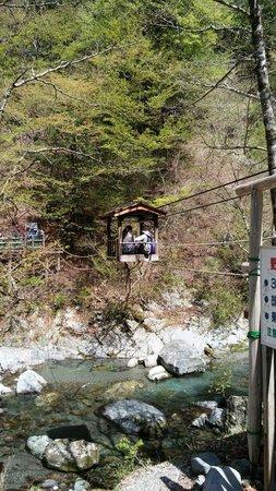 Okuiya Niju Kazurabashi Bridge: 野猿