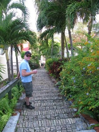The Green Iguana Hotel: 99 Steps, plus 3!