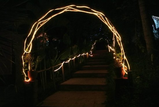 Secret Garden Resort: Garden stairs at night