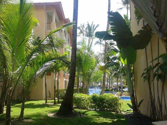 Majestic Elegance Punta Cana : Desde un pasillo