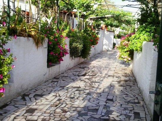 Hotel Casa La Vigna: il vialetto d'entrata