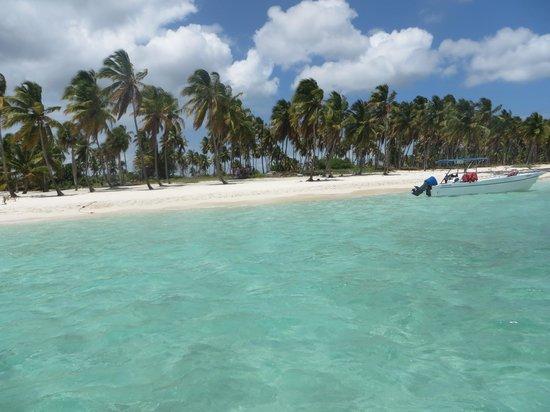 Ryanna Sun: Canto de la playa