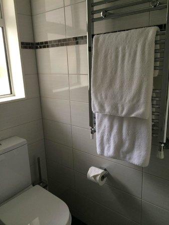 Aspen Court Franz Josef: toilet