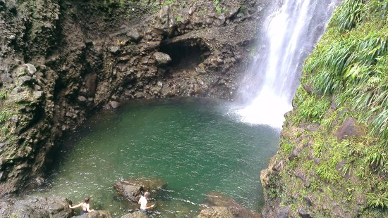 Dominica Botanic Gardens: Middleham Falls with Web Tours