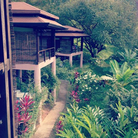 TikiVillas Rainforest Lodge & Spa: beautiful balinese style tiki huts
