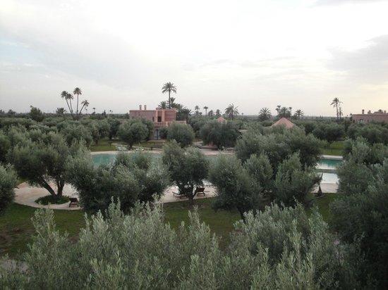 Hotel Douar Al Hana Resort & Spa: vue de la chambre 2