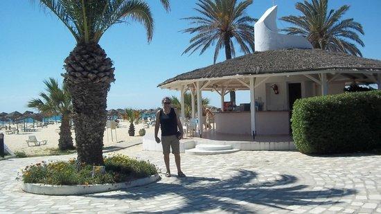 SENTIDO Phenicia: Beach bar