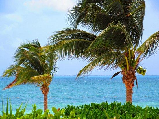 Excellence Playa Mujeres: Beautiful views