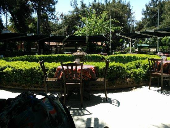 Aska Hotels - Costa Holiday: Чайный сад