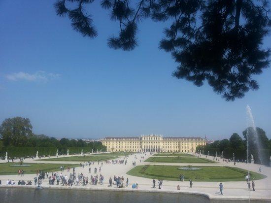 Schonbrunn  Palace: sognando