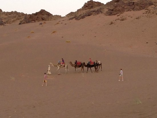 Atlas and Sahara Tours : Camel trek in the Zagora Sahara Desert