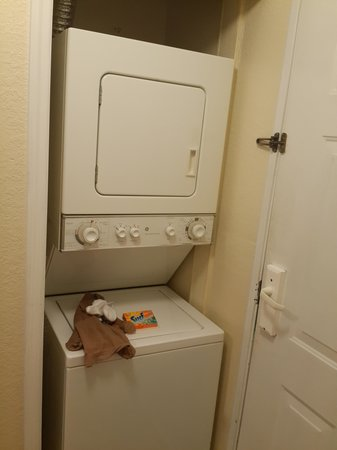 Festiva Orlando Resort : Washing machine and dryer