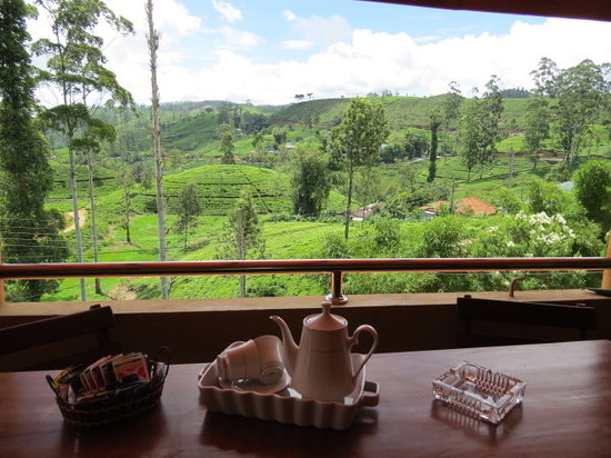 Tea Hill's Bungalow: View From Balcony
