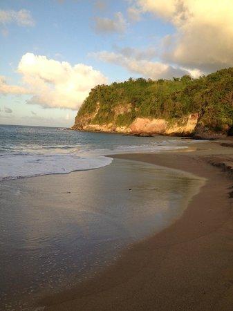 Caraibes Royal: Plage de Tillet
