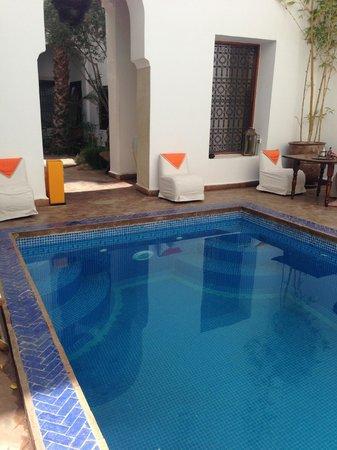 Riad l'Orangeraie: Pool