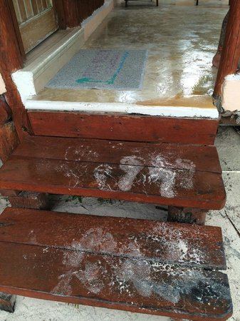 Tita Tulum Hotel Ecologico: Sandy foot prints