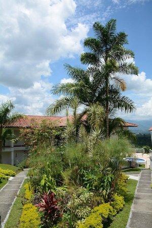 Hotel Mirador Las Palmas : Nature trail