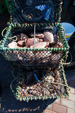 Oban Seafood Hut: Baskets of Brown Crabs