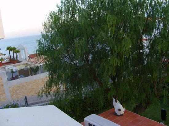 """Hotel do Cerro : Blick von """"meinem"""" Balkon"""