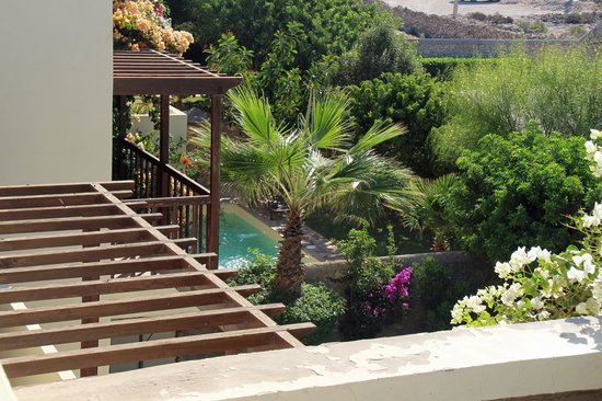 Rebali Riads : Rooftop view