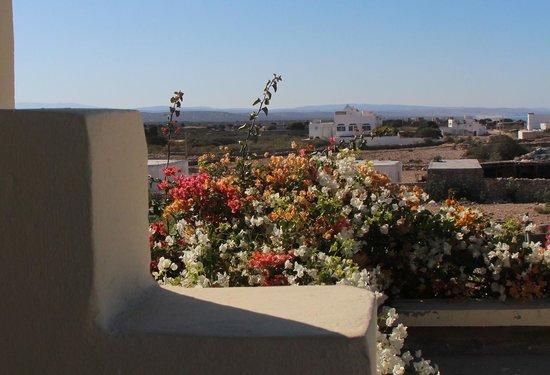 Rebali Riads: Rooftop view