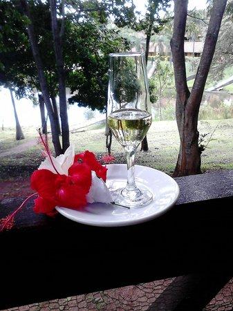 Recanto Alvorada Eco Resort: Celebre a vida!