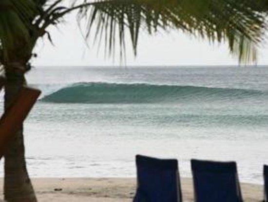 Playa Grande Surf Camp: Waves