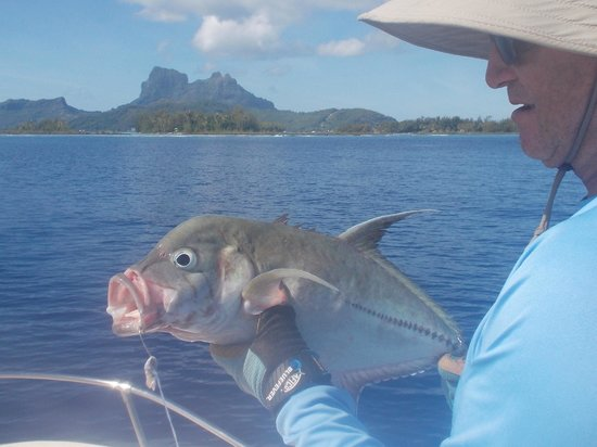 Bora Bora Fishing Paradise Lodge : Daniel