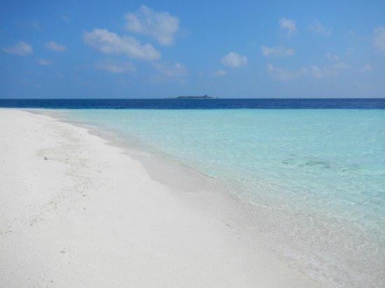 Fihalhohi Island Resort: La plage et l'eau transparente