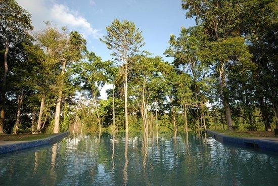 Bergendal Eco & Cultural River Resort: Het zwembad van het Resort