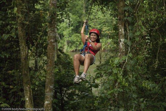 Bergendal Eco & Cultural River Resort: Canopy
