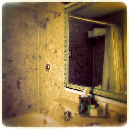 Hilton Chicago : Bath room