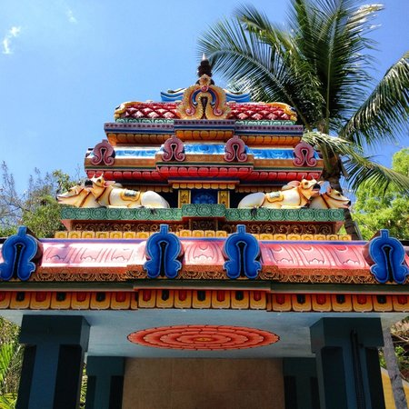 Sivananda Ashram Yoga Retreat: The temple sky