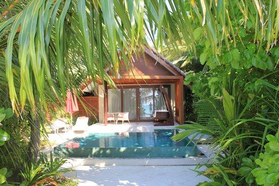 Niyama Private Islands Maldives : Room 5 Beach Studio with Pool