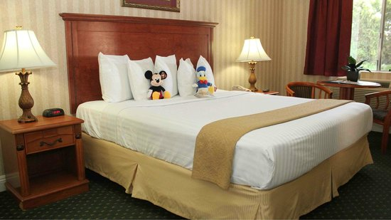 Quality Inn & Suites Maingate : One Queen bed