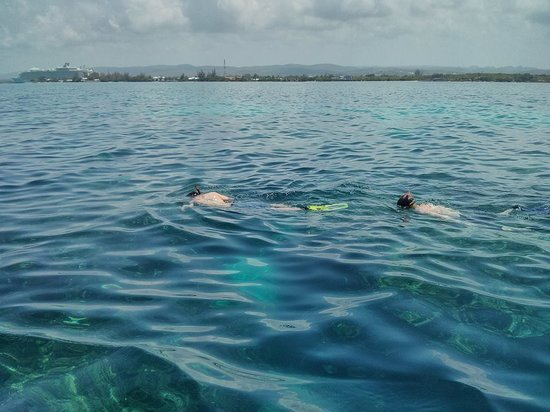 Trelawny Parish, Jamaica: Guests enjoying a day of Snorkeling