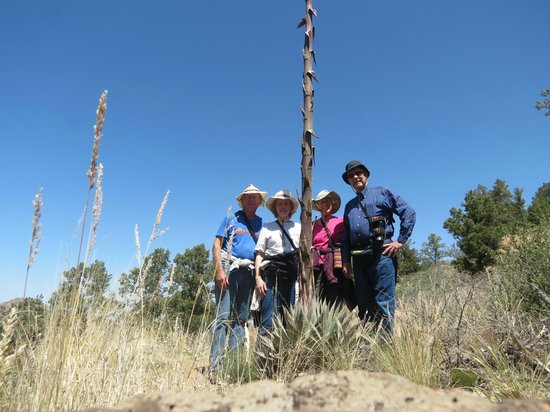 Granite Mountain Trail 261 : hiking group next to a century plant stem