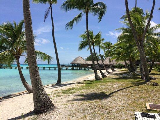 Hotel Kia Ora Resort & Spa: Beach