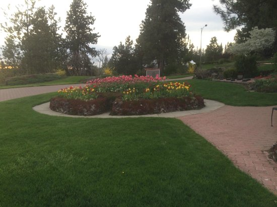 Riblet Mansion and Arbor Crest Winery: Some of the beautiful flowers