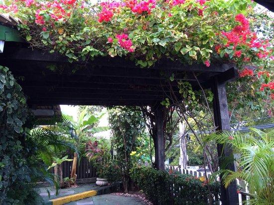 Pousada Paraty Inn: Pergolado